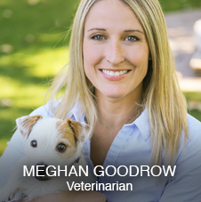 Dr. Meghan Goodrow