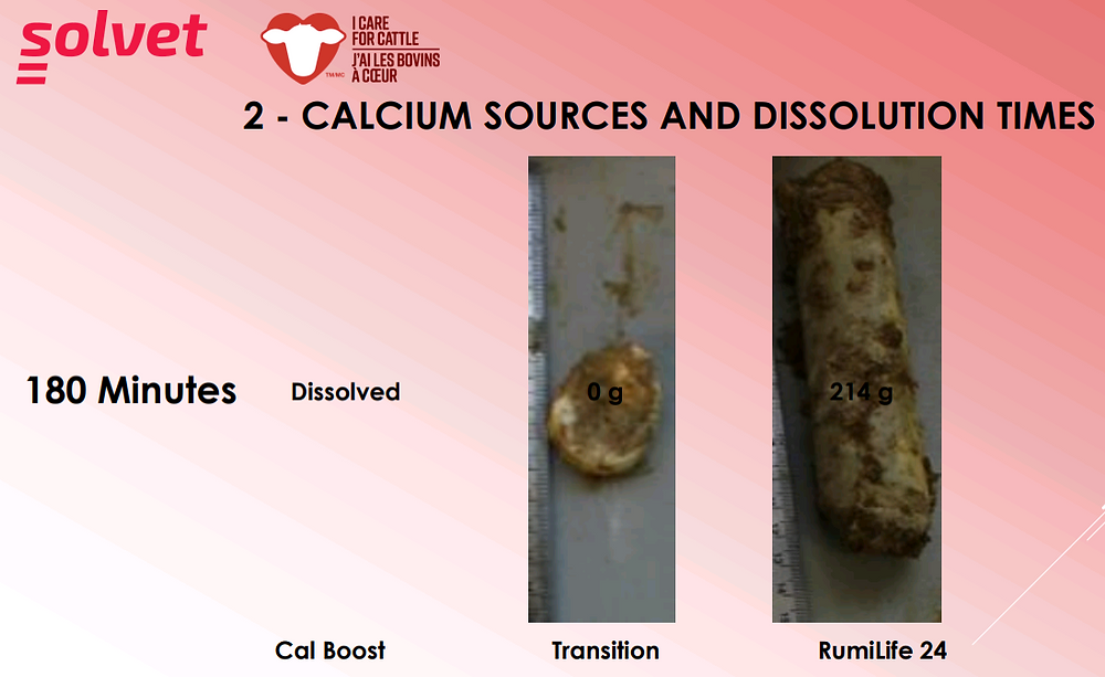 Calcium Sources and Dissolution Times (Image 1)