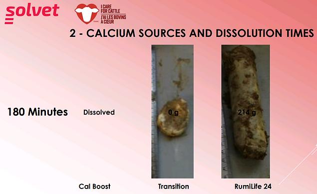 calcium_sources_dissolution_times.png