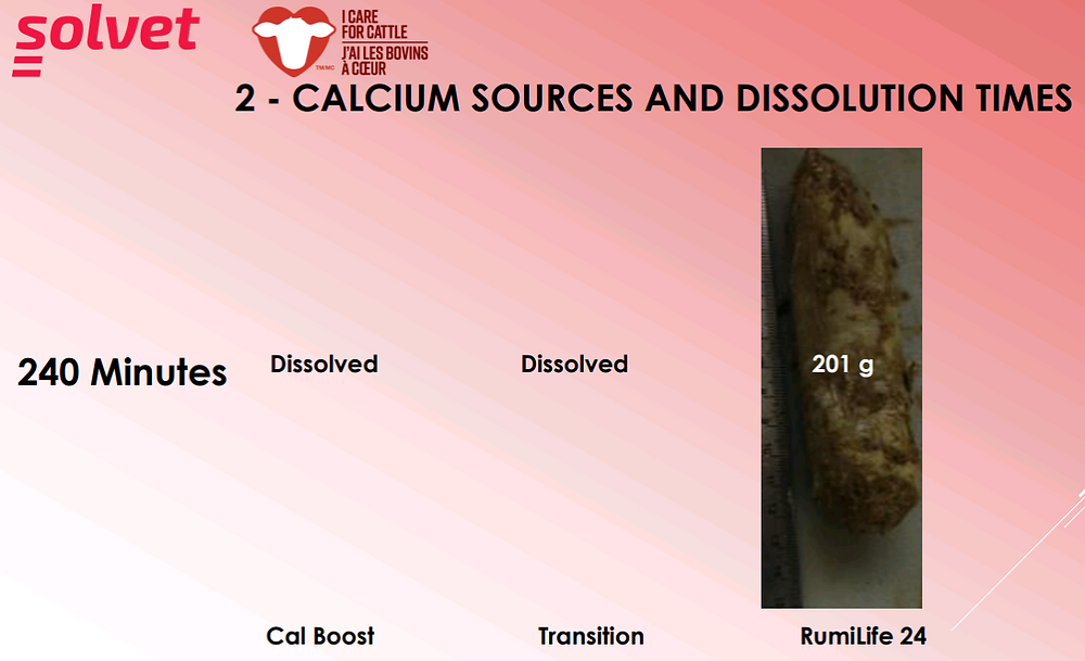 Calcium Sources and Dissolution Times (Image 2)