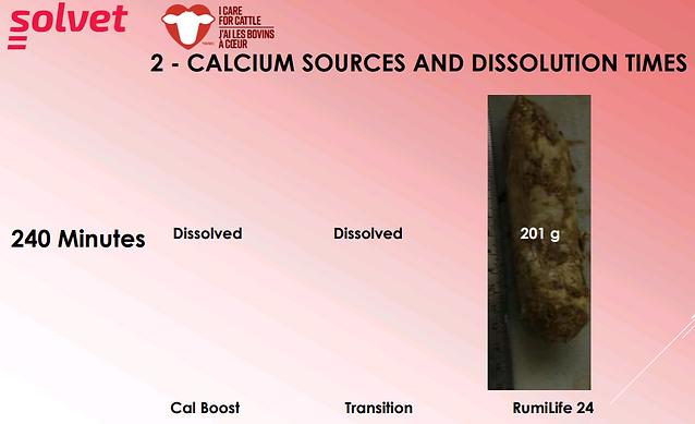 calcium_sources_dissolution_times2.png