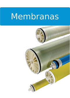 BM membranas.jpg