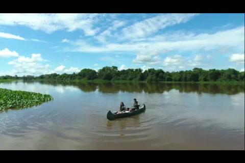O que você pode ver com a Pantanal Wilderness...