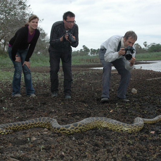 Anaconda Tour