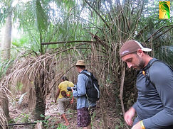 pantanal-wilderness-10.jpg