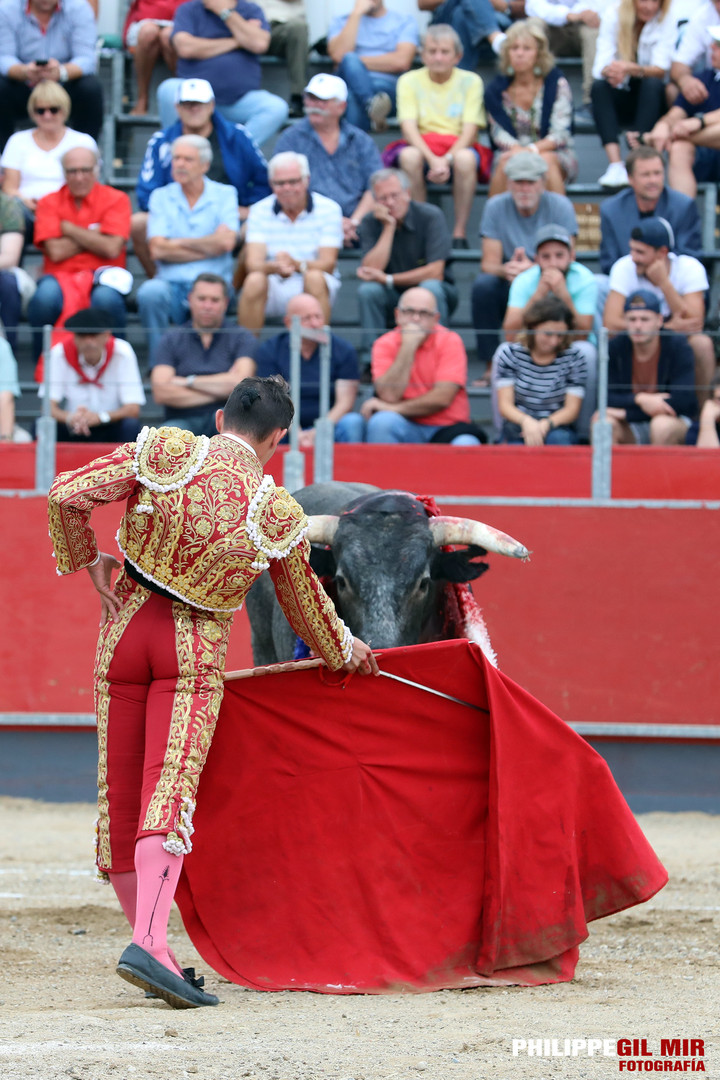 234_Carcassonne_01-09-2019_Vespertina_-_