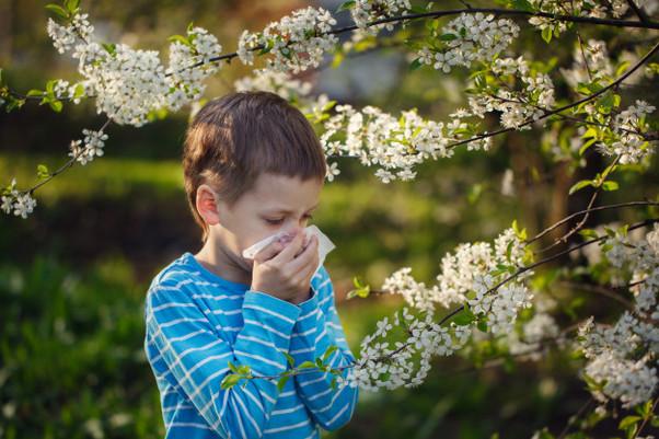 Reações alérgicas advindas da Primavera, saiba mais sobre elas!