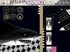 Sharky 2.jpg