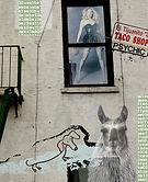 Psychic Llama copy.jpg