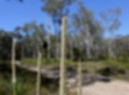 googik trail.jpg