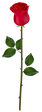 Red_Rose_Bud_PNG_Image.png