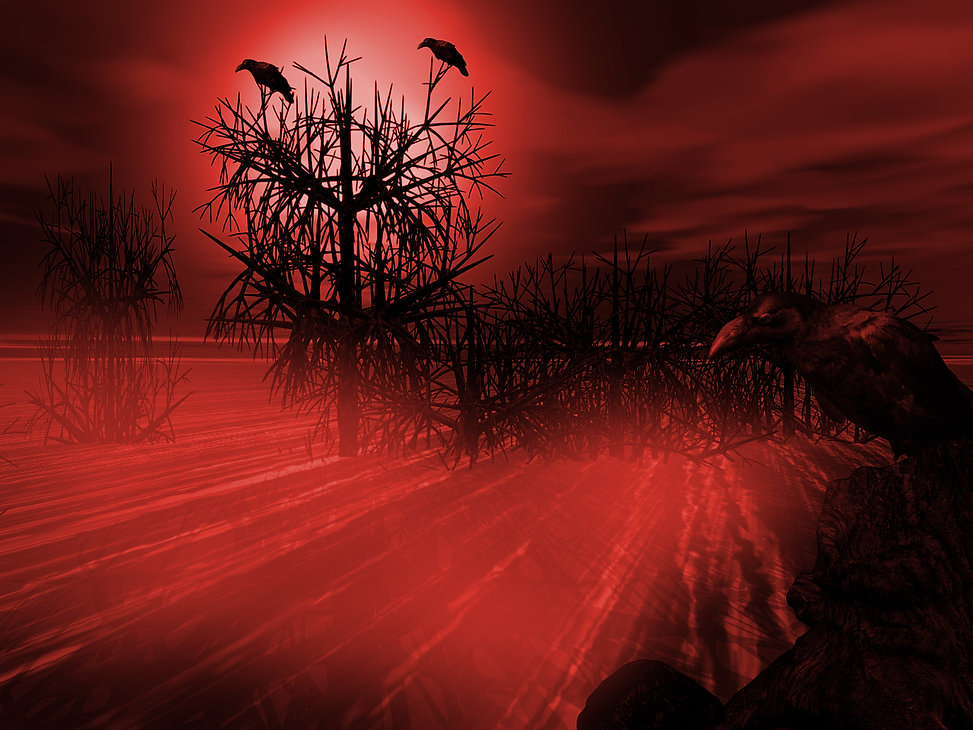 crows on red.jpg