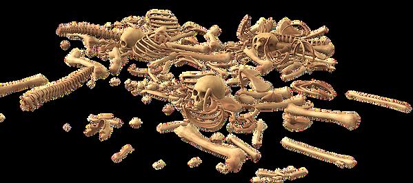 skull-3378748_640.png