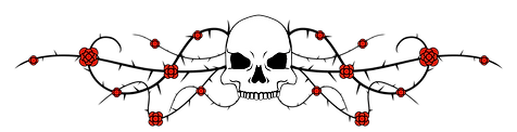 Upper-Skull_Rose Border.png