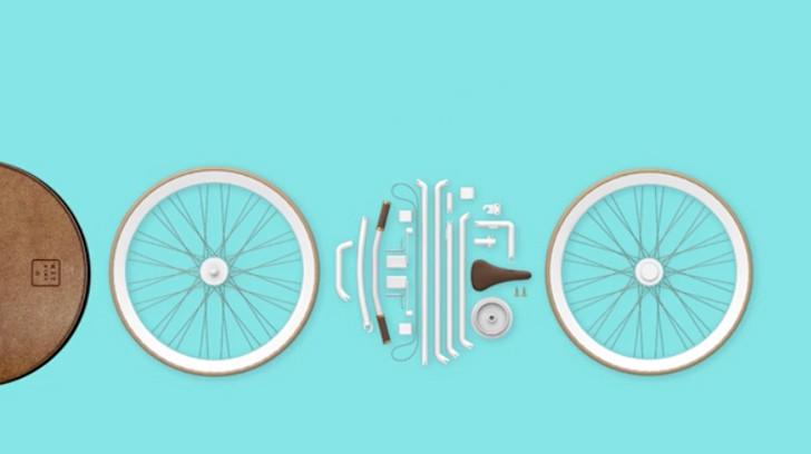 bikeinabag1.jpg