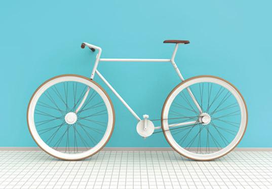 bikeinabag2.jpg
