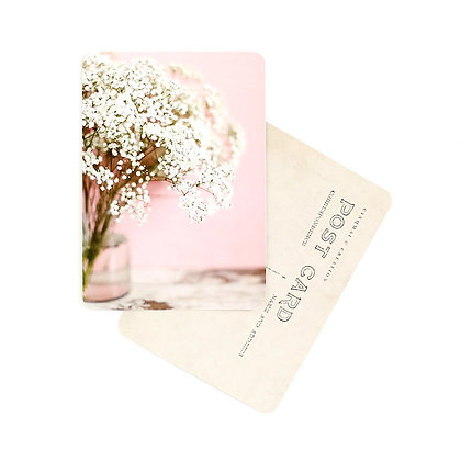 Carte Postale Gypsophile Rose