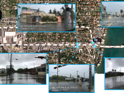 Sea Level Adaptation Strategies - 79th St.