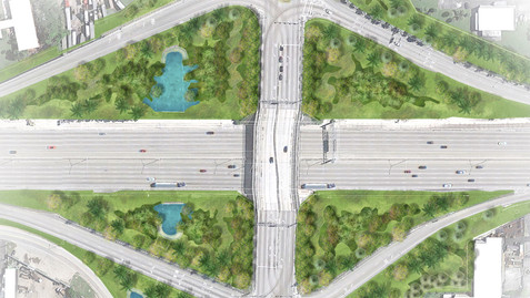 Naturalized Roadways   Palmetto Expressway
