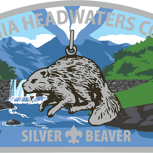 VAHC Silver Beaver CSP