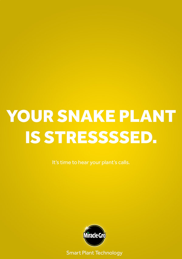 snakestressed.jpg