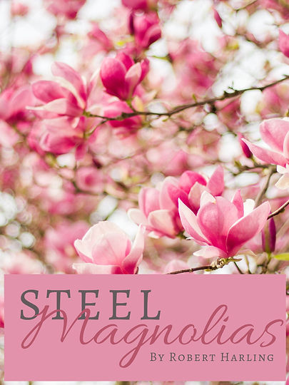 "Photo of magnolia tree with the caption ""Steel Magnolias"""