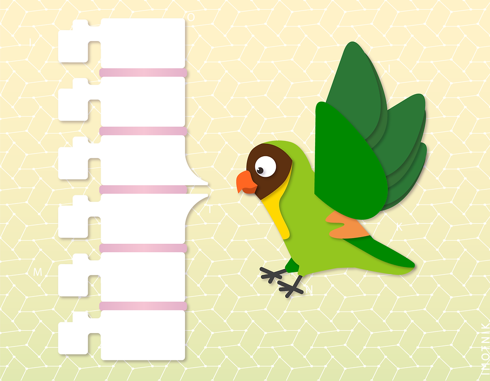 ilustração mostrando como é o bico de papagaio