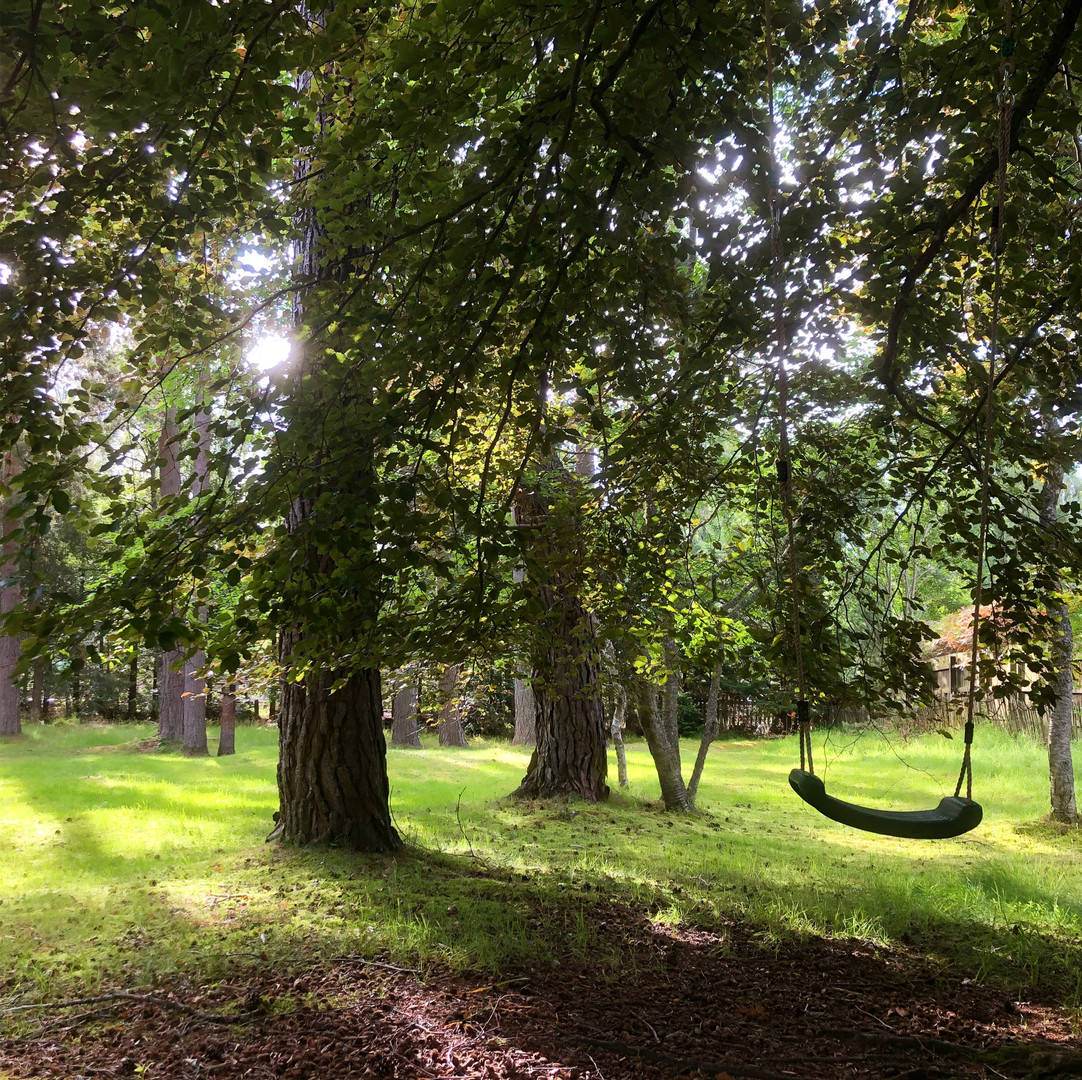 The swing in the garden