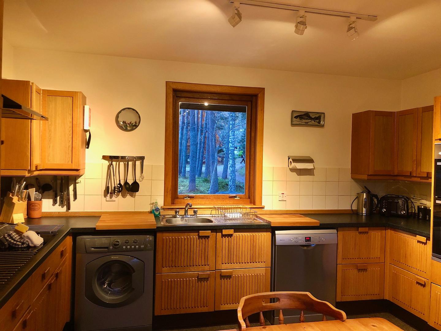 Treehouse Kitchen 2