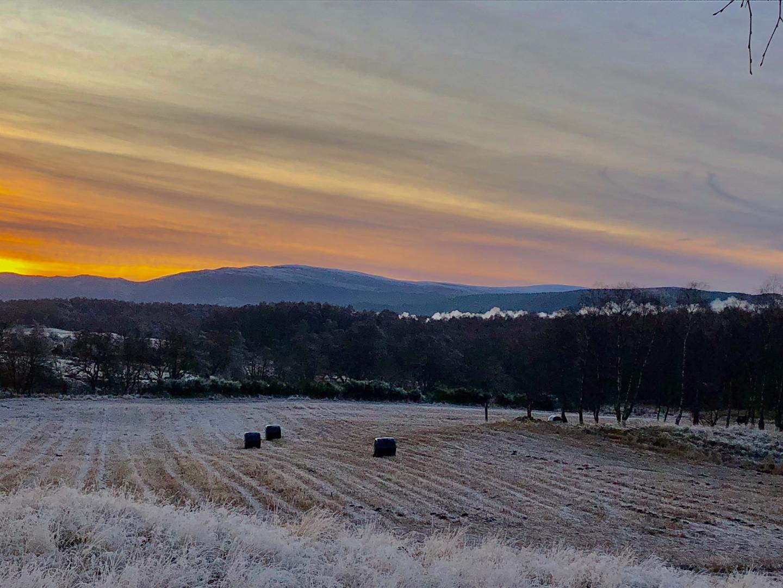 Winter sky over frosty field