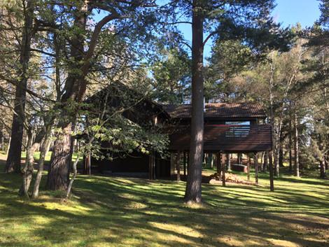 The Treehouse garden