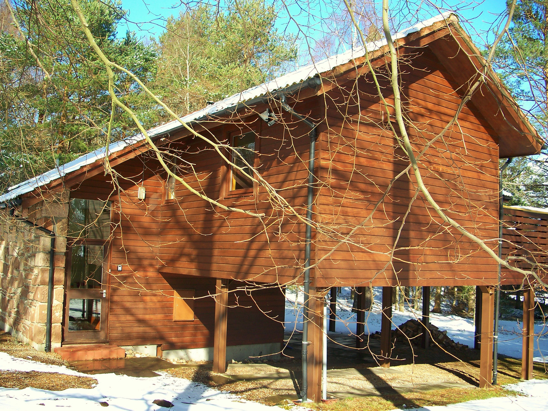 Treehouse in winter sunshine