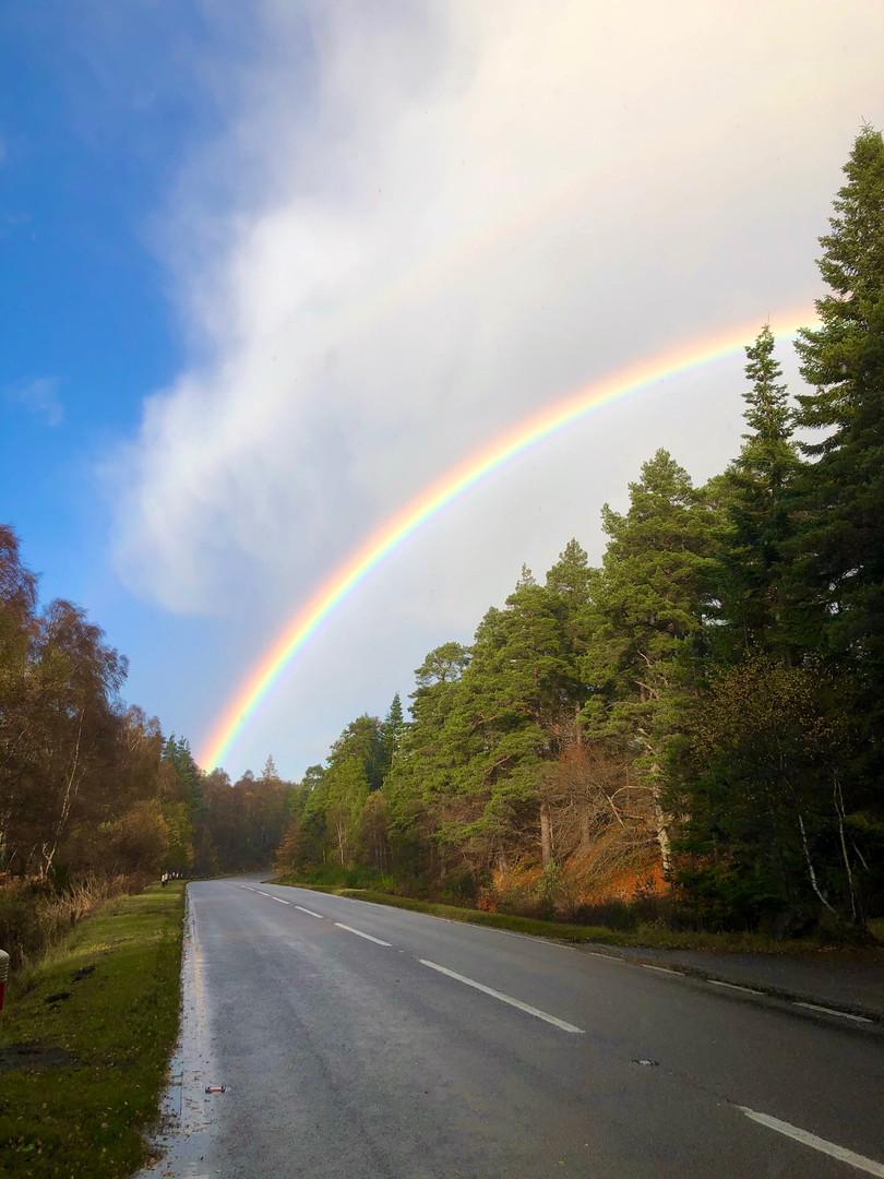Rainbow up ahead
