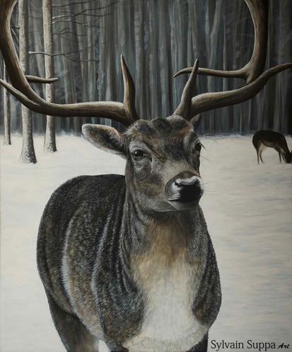 peinture-animaliere-acrylique-realiste-s