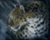 10237069_toile-leopard-d-amour-face-au-v