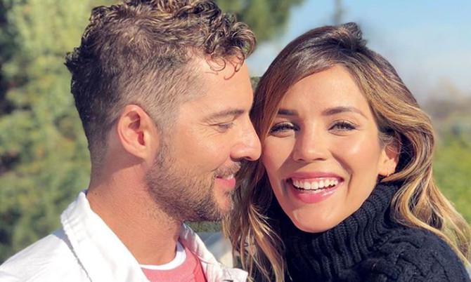 David Bisbal se casó con Rosanna Zanetti