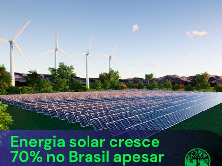 Energia solar cresce 70% no Brasil apesar de pandemia