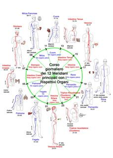 ciclo nictemeriale.jpg