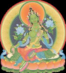 media7-green-taraweb1.png