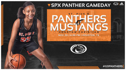 High School Sports Graphics Panthers