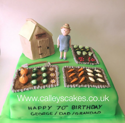 garden veg patch birthday cake