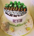 farm cake, garden cake, vegtable cake, sheep cake, countryside cake, 40th birthday cake, duck cake, farm animal cake, country cake, allotment cake,