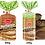 Thumbnail: Bonn Multigrain Bread