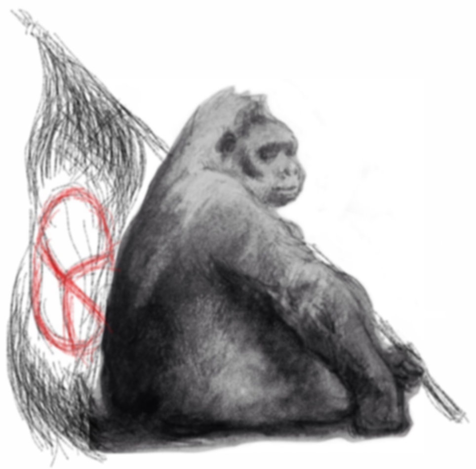 gorillas for peace.jpeg