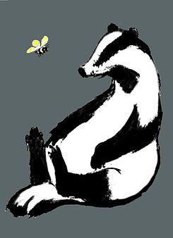 badger bee 19.jpg