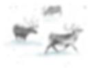 reindeer silver.PNG