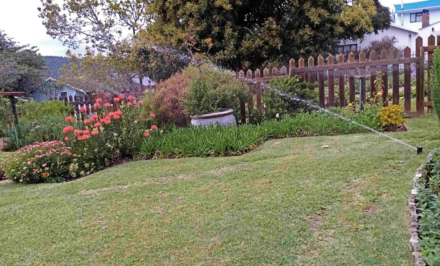 Lawn and Bed Sprayers
