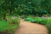 garden-path-59151_640.jpg