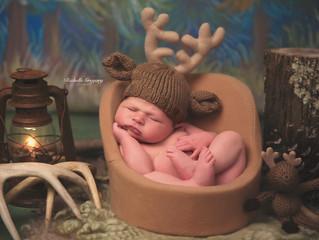 Colt P. ~ 8 day newborn
