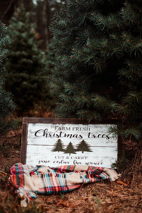 Outdoor Christmas minis 2021